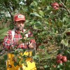 Ron Picking Husk Sweet Apples